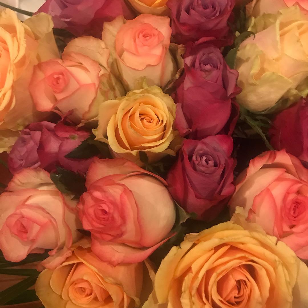 my valentines roses